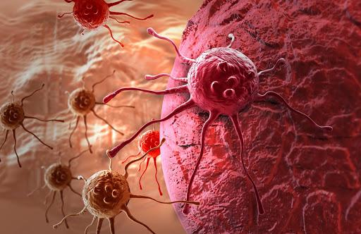 Масло черного тмина при онкологии